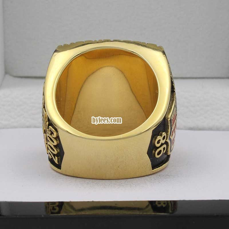 back view of pittsburgh steelers super bowl rings 2005